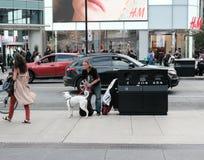Ενήλικο αρσενικό που βλέπει με το σκυλί κατοικίδιων ζώων του σε μια αμερικανική πόλη στοκ φωτογραφία