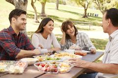 Ενήλικο ζεύγος και ανώτεροι γονείς που έχουν ένα πικ-νίκ σε ένα πάρκο στοκ εικόνες με δικαίωμα ελεύθερης χρήσης