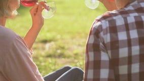 Ενήλικο ζεύγος στο ρομαντικό κρασί κατανάλωσης ημερομηνίας, ιδιωτική επικοινωνία, εμπιστοσύνη απόθεμα βίντεο