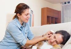 Ενήλικες πτώσεις αυτιών σταλάγματος κορών για να ωριμάσει τη μητέρα στοκ εικόνες