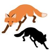 Ενήλικη ρεαλιστική κόκκινη διανυσματική απεικόνιση αλεπούδων Στοκ Εικόνα
