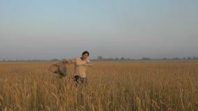 Ενήλικο εύθυμο άτομο τρεξίματος σε έναν τομέα σίτου απόθεμα βίντεο