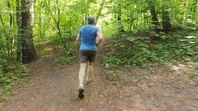 Ενήλικο τρέχοντας ατόμων υπαίθρια σε μια δασική φύση σε ένα δασικό ίχνος και απόλαυση του και να φανεί ευτυχής απόθεμα βίντεο