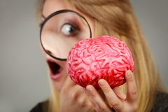 Ενίσχυση εκμετάλλευσης γυναικών - εγκέφαλος έρευνας γυαλιού Στοκ Εικόνα