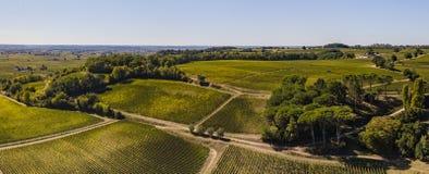Εναέρια άποψη, αμπελώνες του Μπορντώ, Άγιος-Emilion, Gironde τμήμα, Γαλλία στοκ φωτογραφία