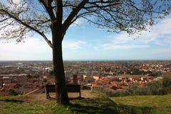 Εναέρια άποψη από έναν λόφο ένα ήρεμο, πράσινο, ήρεμο και ειρηνικό δημόσιο πάρκο ένας απόμερος πάγκος, ένα δέντρο και μια άποψη τ στοκ φωτογραφίες με δικαίωμα ελεύθερης χρήσης