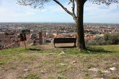 Εναέρια άποψη από έναν λόφο ένα ήρεμο, πράσινο, ήρεμο και ειρηνικό δημόσιο πάρκο ένας απόμερος πάγκος, ένα δέντρο και μια άποψη τ στοκ φωτογραφίες