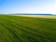 Εναέρια άποψη κηφήνων του πράσινου τομέα, εκτάσεις της Ρωσίας στοκ φωτογραφία