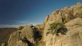 Εναέρια άποψη μπλε ουρανού κοιλάδων μνημείων με το δέντρο στην άκρη απότομων βράχων πλάνο Όμορφοι βράχοι με τα μόνα δέντρα στην ά απόθεμα βίντεο