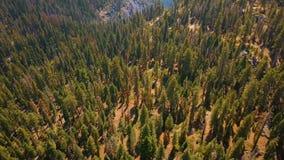 Εναέρια άποψη πάρκων Yosemite εθνική άνωθεν φιλμ μικρού μήκους