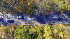 Εναέρια άποψη πέρα από το αυτοκίνητο που ταξιδεύει μέσω του ζωηρόχρωμου δάσους απόθεμα βίντεο