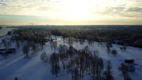 Εναέρια άποψη: Πέταγμα επάνω από το πάρκο που καλύπτεται με το χιόνι απόθεμα βίντεο