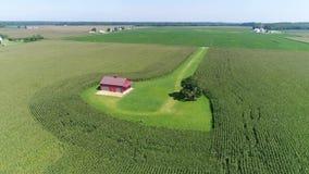 Εναέρια άποψη που πετά πέρα από τους τομείς και τα αγροκτήματα Smyrna Ντελαγουέρ καλαμποκιού και σόγιας φιλμ μικρού μήκους