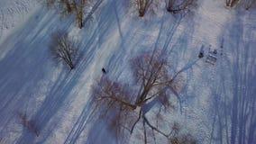 Εναέρια άποψη σχετικά με το χειμερινό πάρκο με τη διαγώνια να κάνει σκι χωρών κλίση φιλμ μικρού μήκους