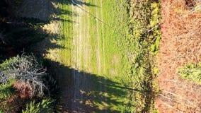 Εναέρια άποψη της μετακίνησης των οχημάτων σε έναν δρόμο βουνών carpathians r απόθεμα βίντεο