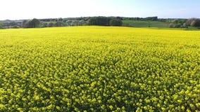 Εναέρια άποψη της νότιας Σουηδίας απόθεμα βίντεο