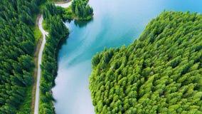 Εναέρια άποψη της οδήγησης αυτοκινήτων μέσω των fores και της λίμνης στην πλευρά Όμορφος δρόμος βουνών Οδήγηση στο δρόμο βουνών Δ απόθεμα βίντεο