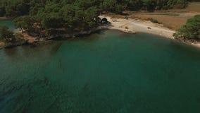 Εναέρια άποψη της τροπικής ακτής με το δάσος και τον κόλπο απόθεμα βίντεο