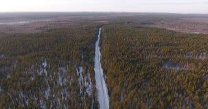 Εναέρια άποψη της χειμερινής φύσης στο σιβηρικό δάσος απόθεμα βίντεο