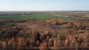 Εναέρια άποψη τοπίων φθινοπώρου απόθεμα βίντεο