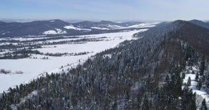 Εναέρια άποψη: Τοπίων χειμερινής φύσης όμορφος άσπρος διάσημος ειδυλλιακός τουρισμός ταξιδιού βουνών της Ευρώπης δασικός φιλμ μικρού μήκους