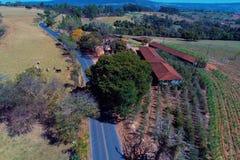 Εναέρια άποψη του αγροτικού δρόμου με χρωματισμένα και ξηρά δέντρα στοκ φωτογραφία με δικαίωμα ελεύθερης χρήσης