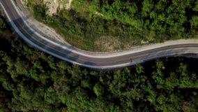 Εναέρια άποψη του δρόμου βουνών μεταξύ των πράσινων δέντρων φιλμ μικρού μήκους