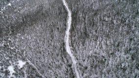 Εναέρια άποψη του δρόμου μέσω του δάσους πεύκων χιονιού το χειμώνα πλάνο Εναέριο πέταγμα τοπίων χειμερινών αγροτικό χωρών άποψης  στοκ εικόνες με δικαίωμα ελεύθερης χρήσης