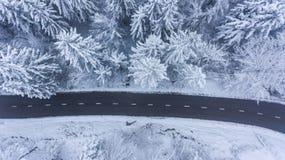 Εναέρια άποψη του δρόμου μέσω ενός χειμερινού δάσους στοκ εικόνες