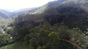 Εναέρια άποψη του δρόμου στο βουνό κοντά στον ποταμό στη Σρι Λάνκα απόθεμα βίντεο