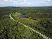 Εναέρια άποψη του δρόμου στο δάσος με το έλος στοκ φωτογραφίες