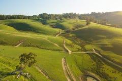 Εναέρια άποψη του καλλιεργήσιμου εδάφους στο νότο Gippsland στοκ εικόνα με δικαίωμα ελεύθερης χρήσης