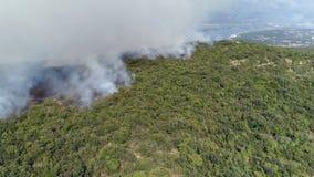 Εναέρια άποψη του καψίματος των θάμνων στους λόφους φιλμ μικρού μήκους