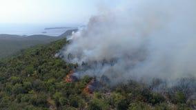Εναέρια άποψη του καψίματος των θάμνων στους λόφους απόθεμα βίντεο