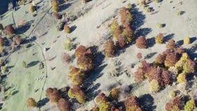 Εναέρια άποψη του λιβαδιού φθινοπώρου με τις θυμωνιές χόρτου απόθεμα βίντεο