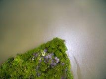 Εναέρια άποψη του μικρού πράσινου νησιού στο μεγάλο ποταμό στοκ φωτογραφία
