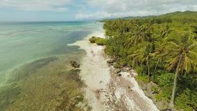 Εναέρια άποψη του νησιού ακτών Bohol με τις βάρκες _ Φιλιππίνες απόθεμα βίντεο