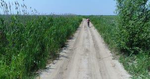 Εναέρια άποψη του προσώπου στην οδήγηση ποδηλάτων μεταξύ των φυτειών φιλμ μικρού μήκους
