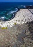 Εναέρια άποψη του σπειροειδούς Caleta, σπειροειδής παραλία, χαλίκια σχετικά με το έδαφος που διαμορφώνει μια σπείρα Orzola, Lanza στοκ εικόνα με δικαίωμα ελεύθερης χρήσης