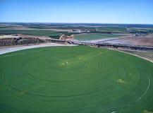 Εναέρια άποψη του τομέα συγκομιδών με τον κυκλικό ψεκαστήρα άρδευσης άξονα στοκ εικόνα με δικαίωμα ελεύθερης χρήσης