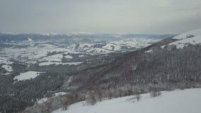 Εναέρια άποψη του χιονισμένου δάσους στα χειμερινά βουνά απόθεμα βίντεο