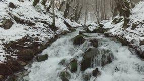 Εναέρια άποψη του χιονώδους ποταμού στο δάσος φιλμ μικρού μήκους