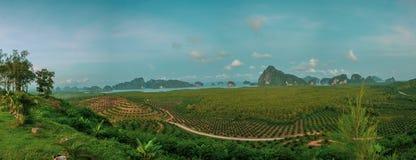Εναέρια άποψη του όμορφου κόλπου Phang Nga στην Ταϊλάνδη Στοκ εικόνα με δικαίωμα ελεύθερης χρήσης