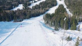 Εναέρια άποψη των ανθρώπων σε μια διαδρομή σκι με τα κωνοφόρα δέντρα και από την την δύο πλευρά της διαδρομής footage Χιονοδρομικ απόθεμα βίντεο
