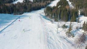 Εναέρια άποψη των ανθρώπων σε μια διαδρομή σκι με τα κωνοφόρα δέντρα και από την την δύο πλευρά της διαδρομής footage r απόθεμα βίντεο