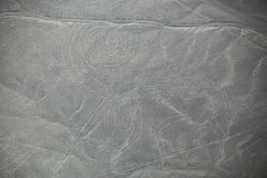 Εναέρια άποψη των γραμμών Nazca - πίθηκος geoglyph, Περού Στοκ Εικόνες