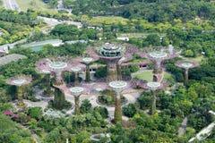 Εναέρια άποψη των κήπων Σινγκαπούρης από τον κόλπο Στοκ Φωτογραφία