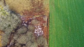 Εναέρια άποψη των τομέων και των δέντρων στο κραμπολάχανο στοκ εικόνες