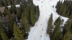 Εναέρια άποψη Biathlon Σπουδαστές αθλητών που συμμετέχουν στους τοπικούς ανταγωνισμούς Μετάβαση της ομάδας απόστασης αθλητών μέσα απόθεμα βίντεο