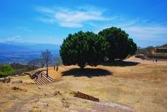 Εναέρια άποψη Monte Alban Ruins, Oaxaca, Μεξικό Στοκ φωτογραφίες με δικαίωμα ελεύθερης χρήσης